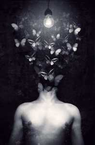 Butterfly Mind